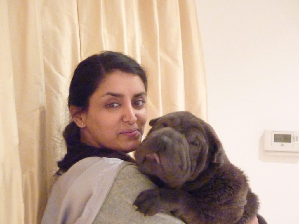 Aneeta Prem Deeva Shar-Pei